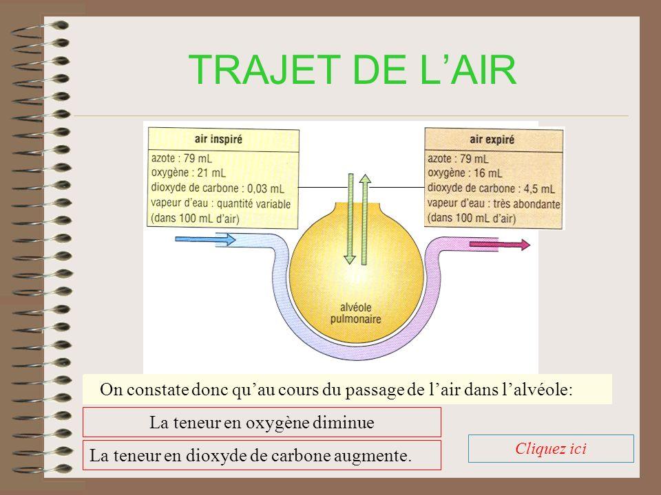 TRAJET DE L'AIR La teneur en azote augmente: