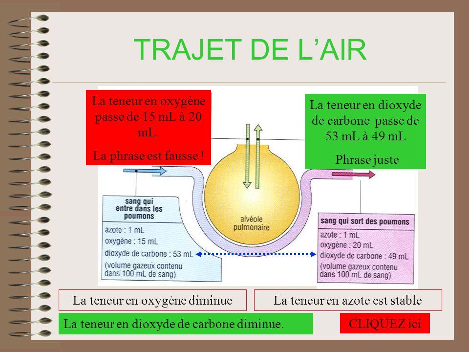 TRAJET DE L'AIR La teneur en oxygène passe de 15 mL à 20 mL.