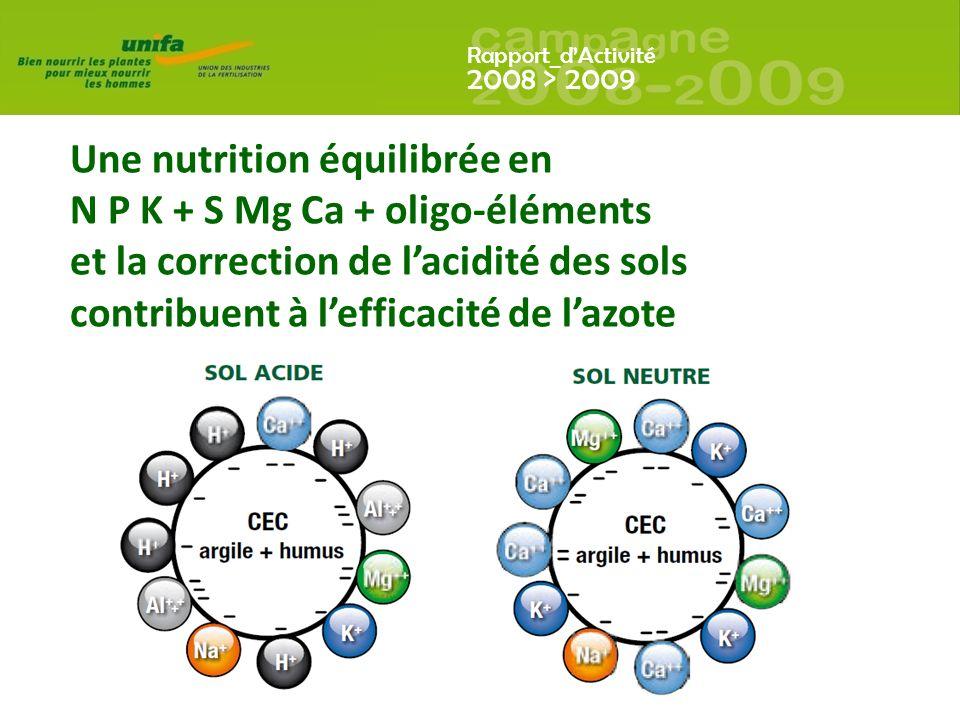 Une nutrition équilibrée en