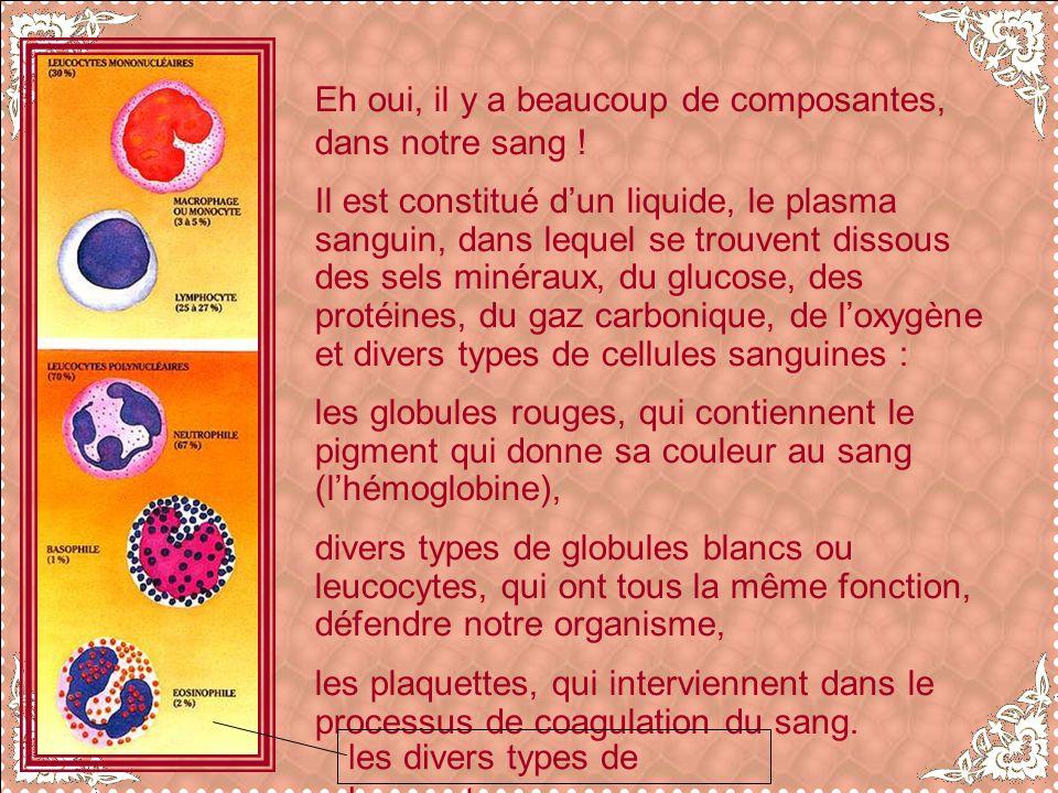 Eh oui, il y a beaucoup de composantes, dans notre sang !