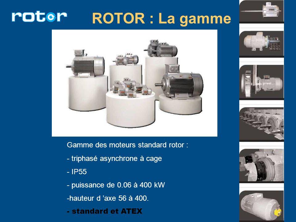 ROTOR : La gamme Gamme des moteurs standard rotor :