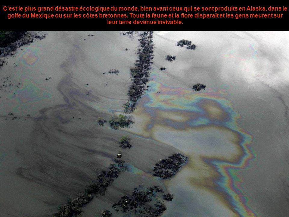 C'est le plus grand désastre écologique du monde, bien avant ceux qui se sont produits en Alaska, dans le golfe du Mexique ou sur les côtes bretonnes.