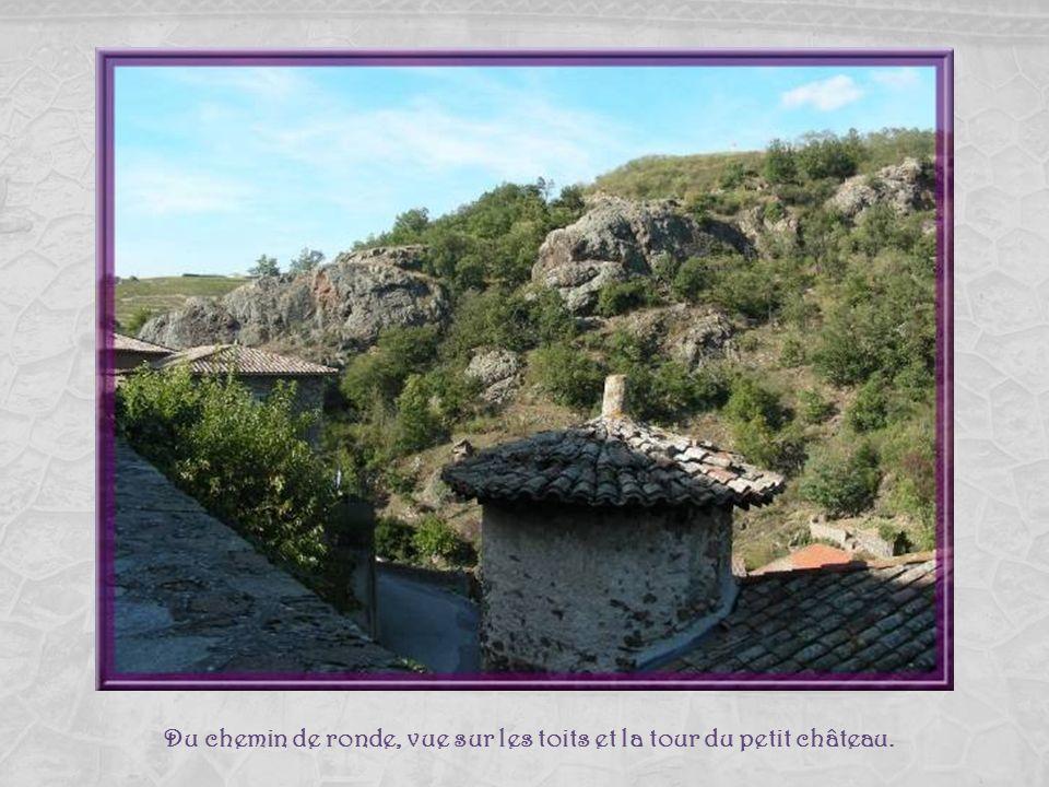 Du chemin de ronde, vue sur les toits et la tour du petit château.