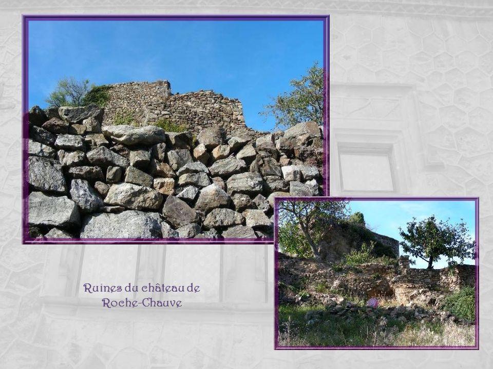 Ruines du château de Roche-Chauve