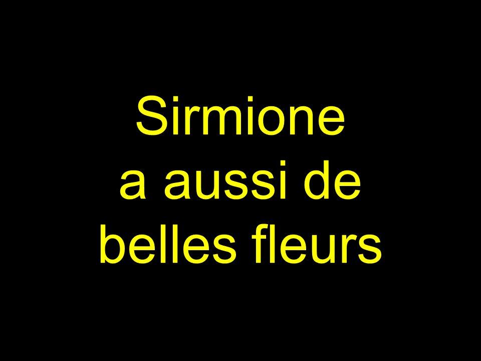 Sirmione a aussi de belles fleurs