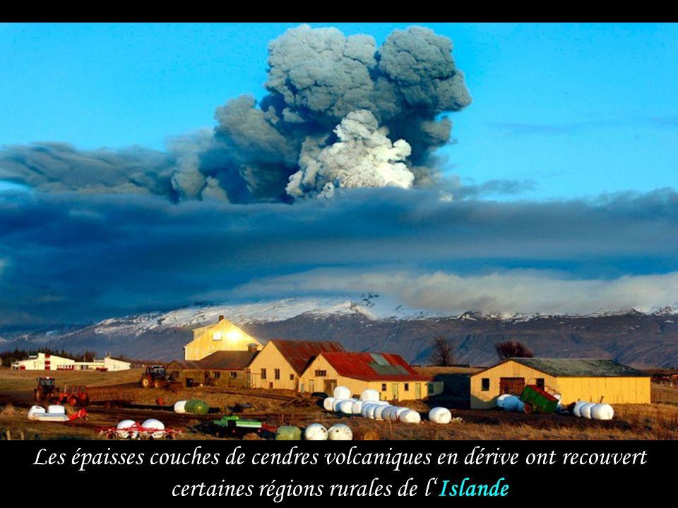 Les épaisses couches de cendres volcaniques en dérive ont recouvert certaines régions rurales de l' Islande
