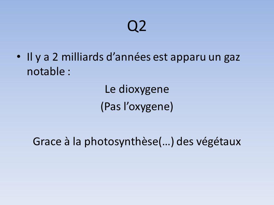 Grace à la photosynthèse(…) des végétaux