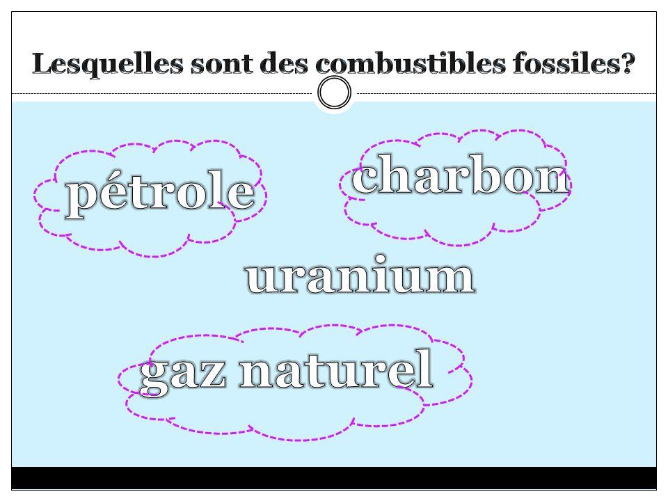Lesquelles sont des combustibles fossiles
