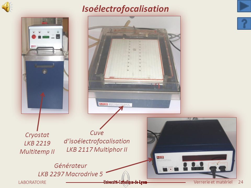 Isoélectrofocalisation