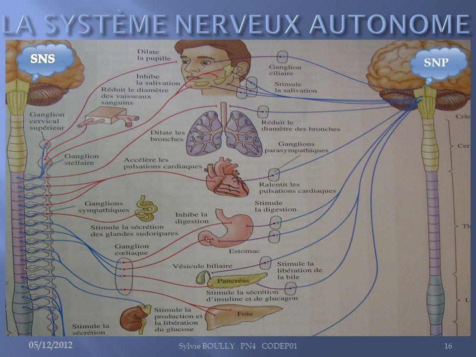 LA SYSTÈME NERVEUX AUTONOME