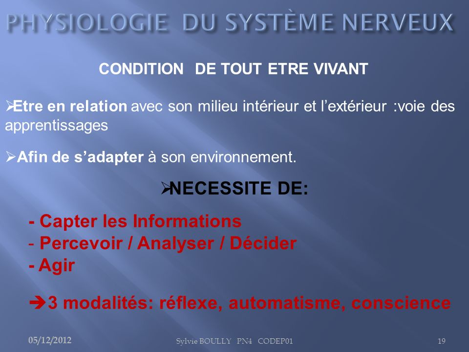 PHYSIOLOGIE DU SYSTÈME NERVEUX