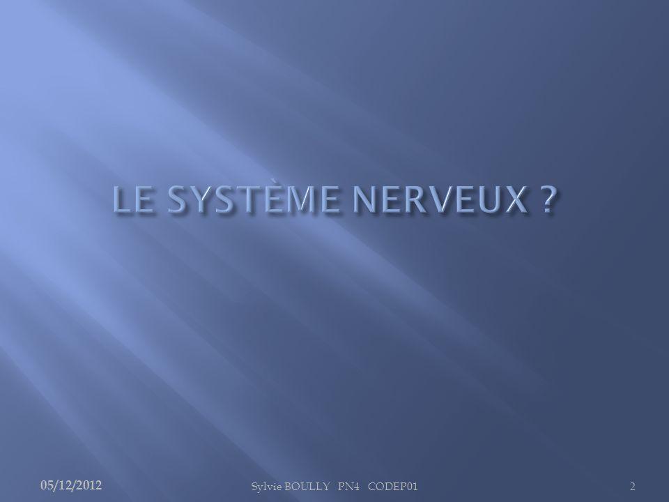 LE SYSTÈME NERVEUX 05/12/2012 Sylvie BOULLY PN4 CODEP01