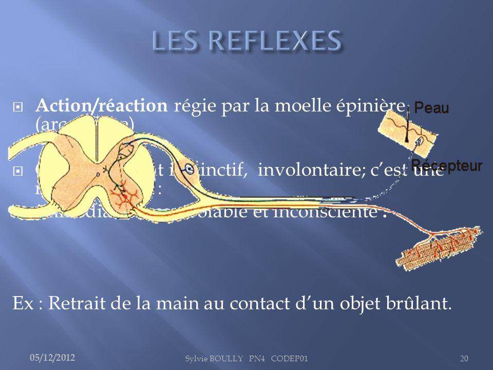 Action/réaction régie par la moelle épinière (arc réflexe)