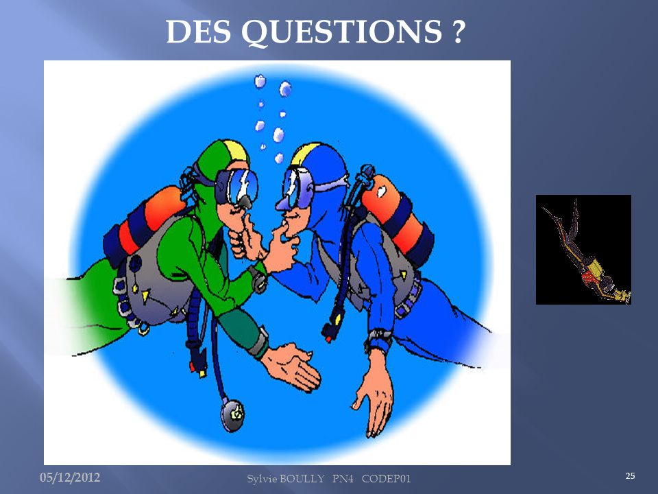 DES QUESTIONS 05/12/2012 Sylvie BOULLY PN4 CODEP01 25