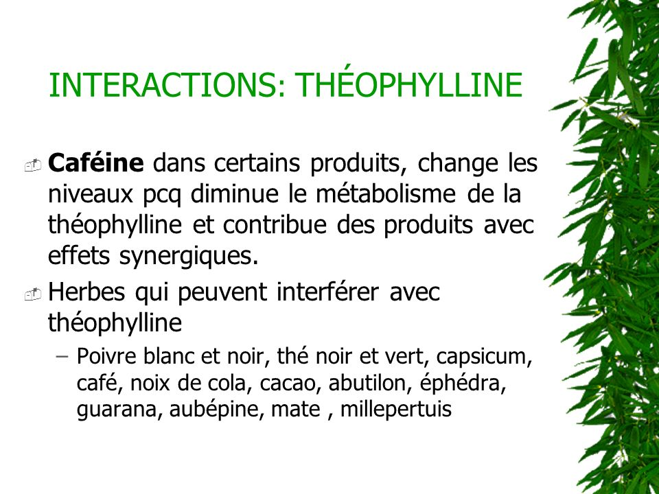 INTERACTIONS: THÉOPHYLLINE