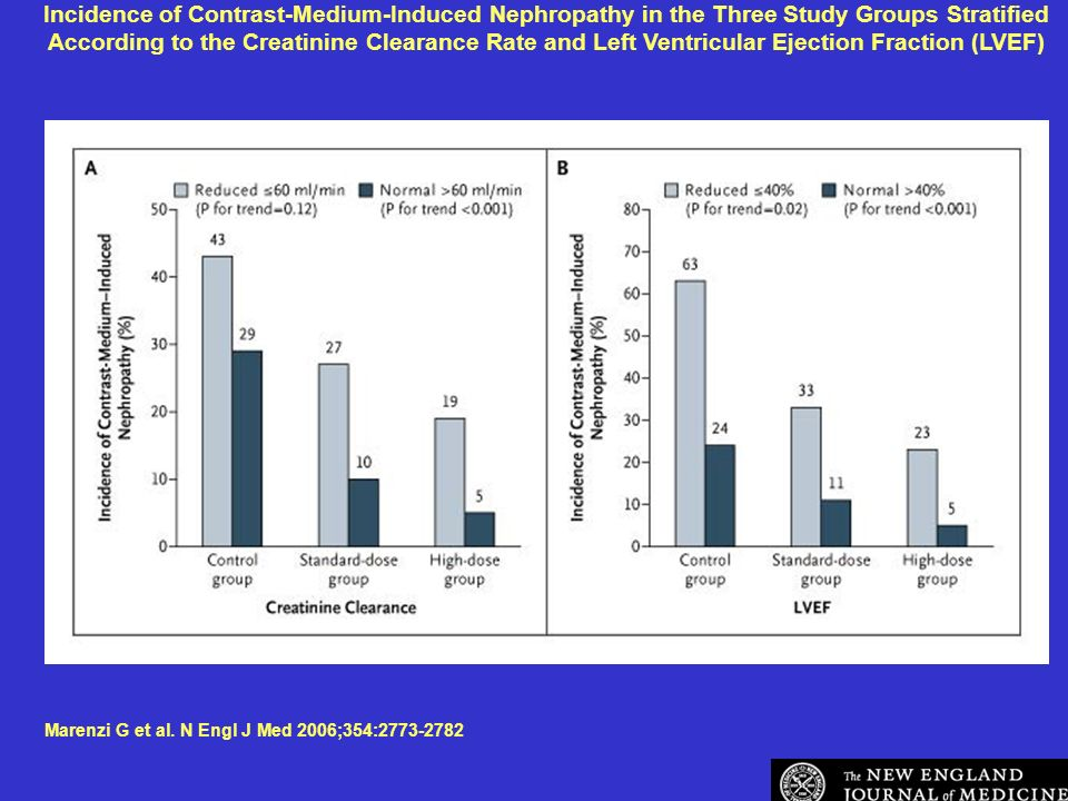 Incidence of Contrast-Medium-Induced Nephropathy in the Three Study Groups Stratified According to the Creatinine Clearance Rate and Left Ventricular Ejection Fraction (LVEF)