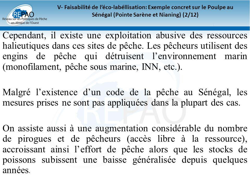 V- Faisabilité de l'éco-labéllisation: Exemple concret sur le Poulpe au Sénégal (Pointe Sarène et Nianing) (2/12)
