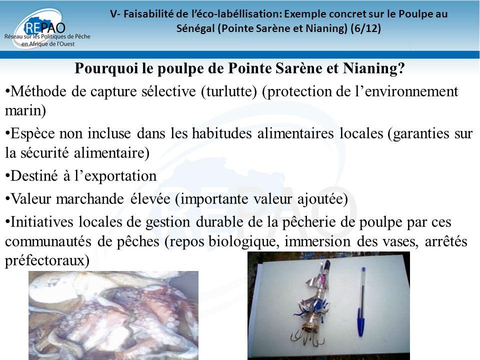 Pourquoi le poulpe de Pointe Sarène et Nianing