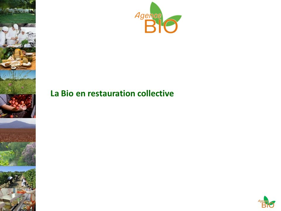 La Bio en restauration collective