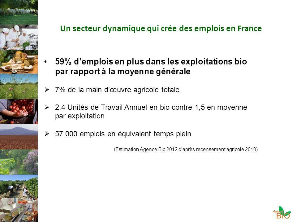 Un secteur dynamique qui crée des emplois en France