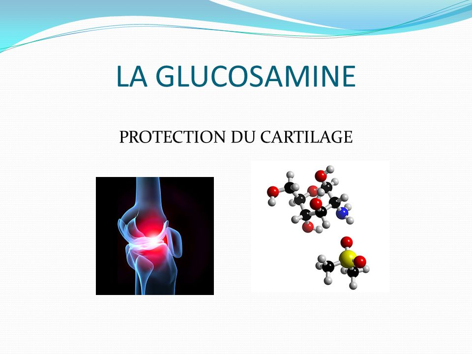 PROTECTION DU CARTILAGE
