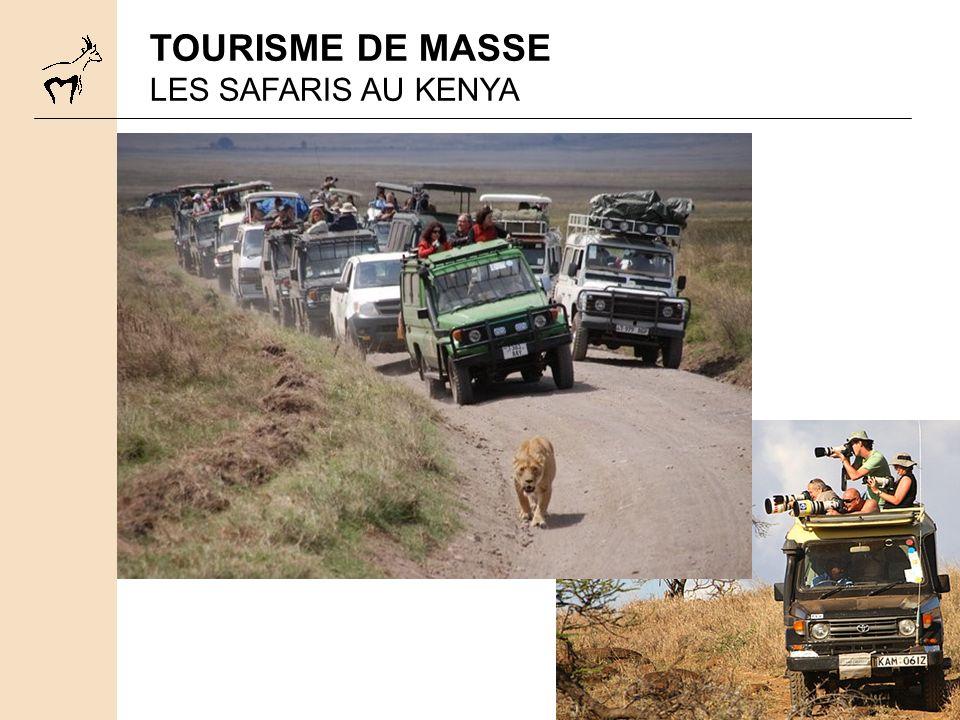 TOURISME DE MASSE LES SAFARIS AU KENYA