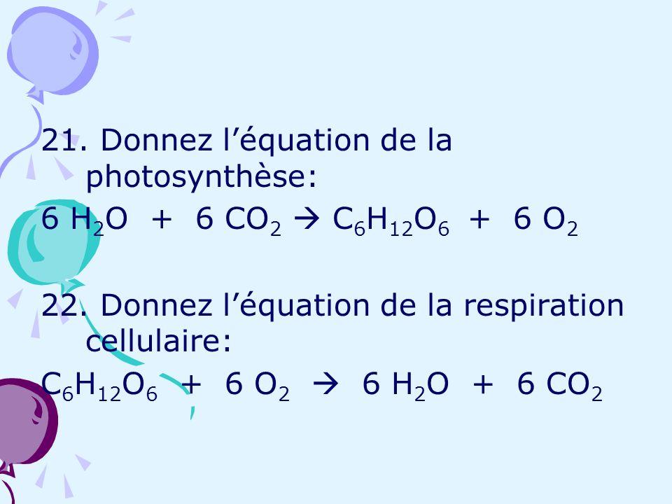 21. Donnez l'équation de la photosynthèse:
