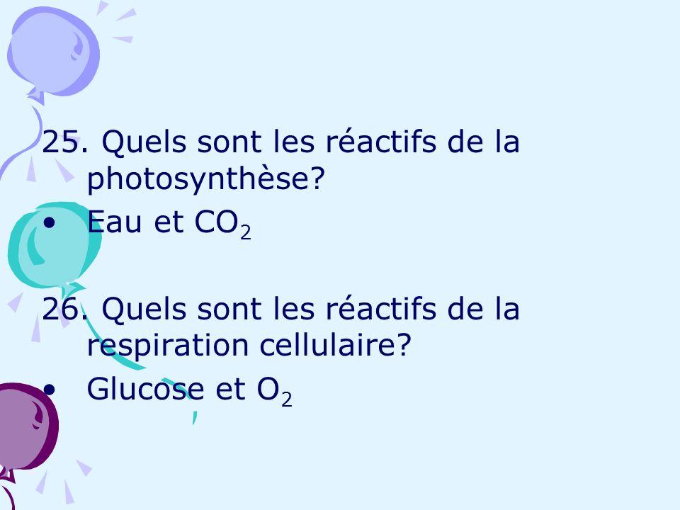 25. Quels sont les réactifs de la photosynthèse