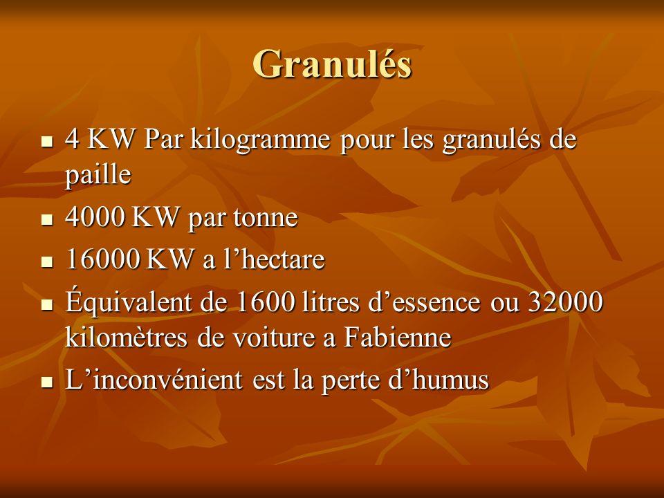 Granulés 4 KW Par kilogramme pour les granulés de paille
