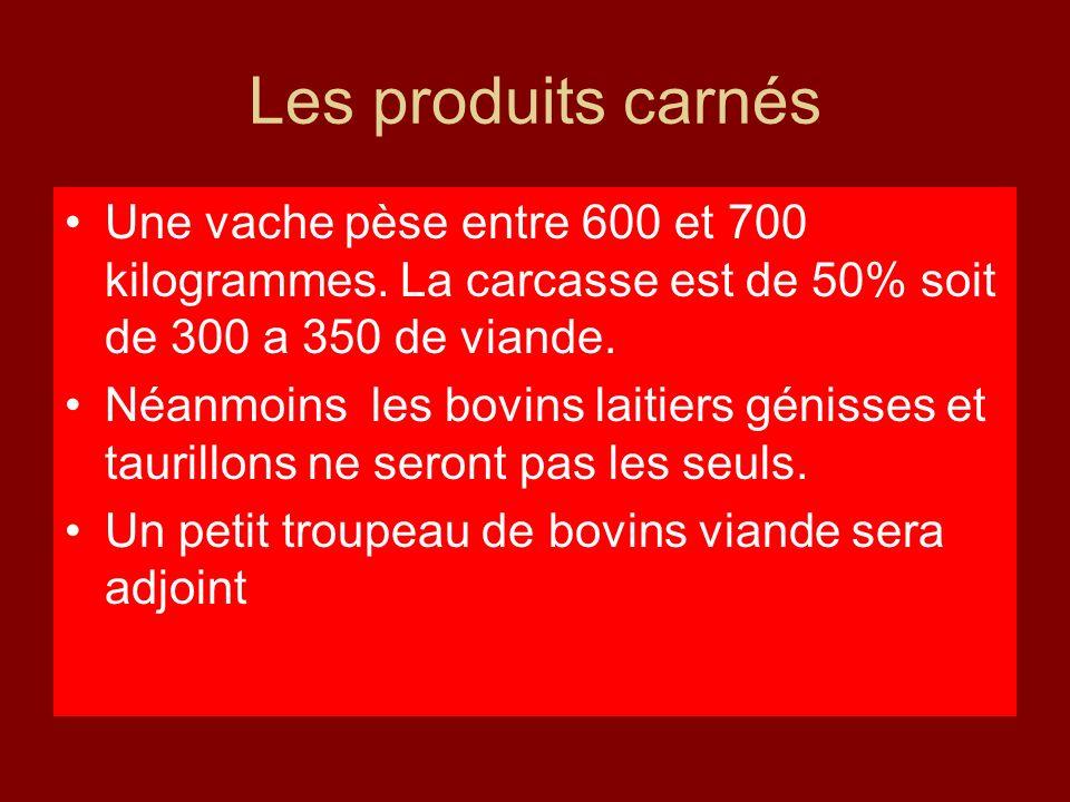 Les produits carnés Une vache pèse entre 600 et 700 kilogrammes. La carcasse est de 50% soit de 300 a 350 de viande.