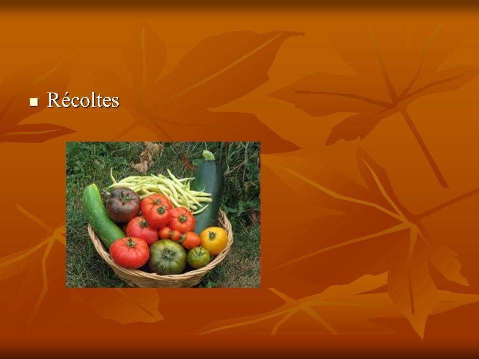 Récoltes
