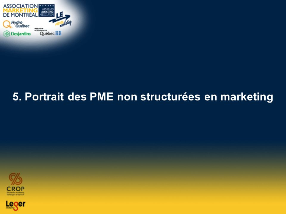 5. Portrait des PME non structurées en marketing