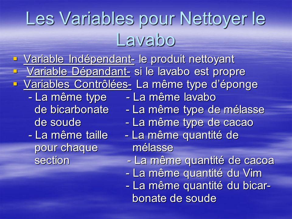 Les Variables pour Nettoyer le Lavabo