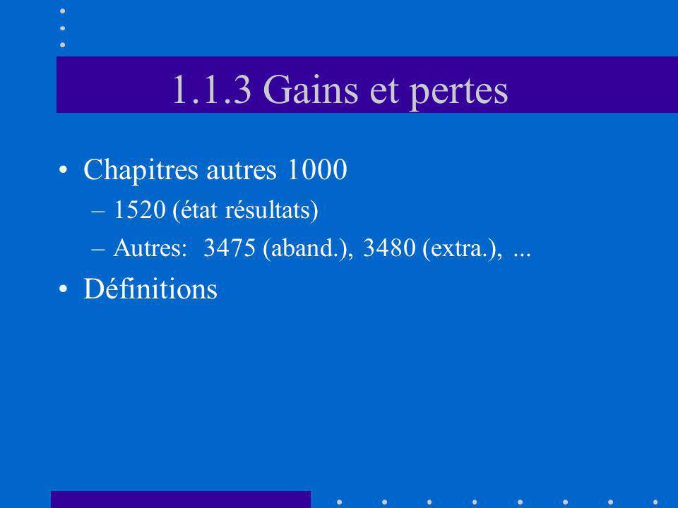 1.1.3 Gains et pertes Chapitres autres 1000 Définitions