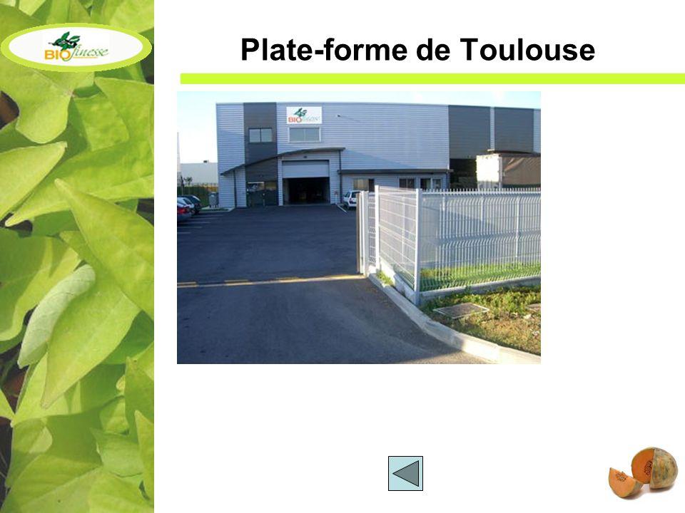 Plate-forme de Toulouse