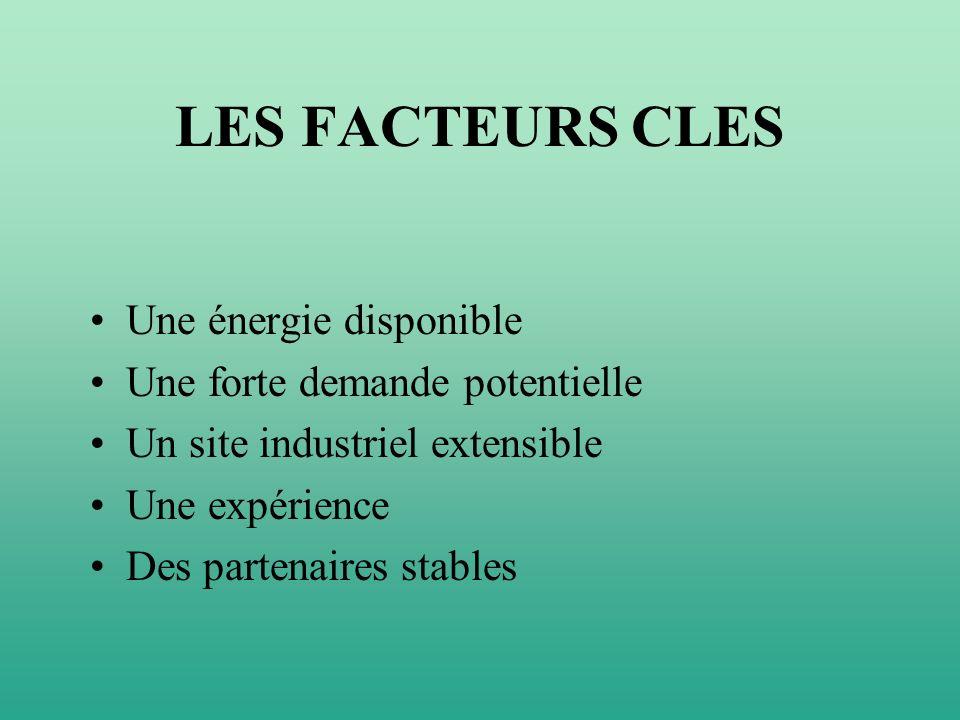 LES FACTEURS CLES Une énergie disponible Une forte demande potentielle