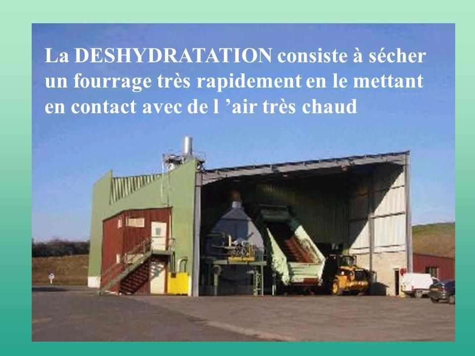 La DESHYDRATATION consiste à sécher un fourrage très rapidement en le mettant en contact avec de l 'air très chaud