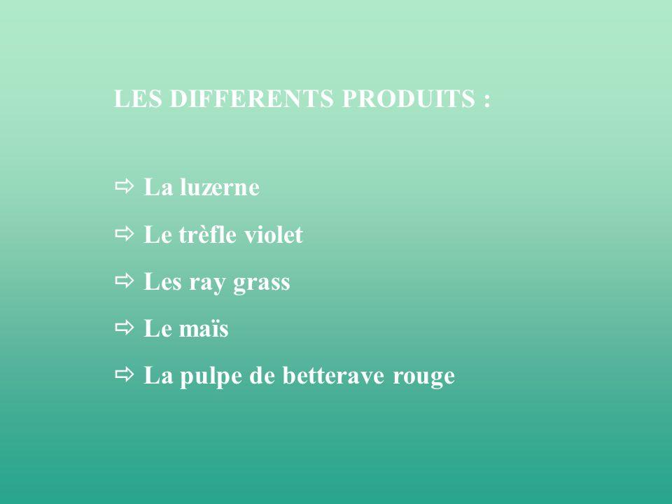 LES DIFFERENTS PRODUITS :