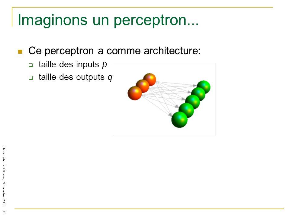 Imaginons un perceptron...