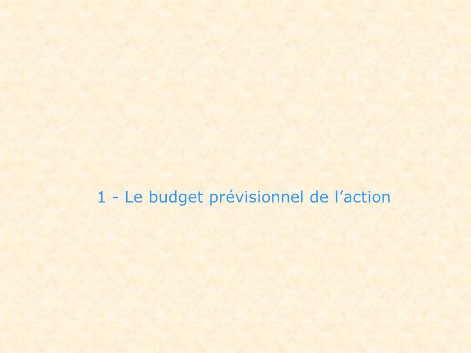 1 - Le budget prévisionnel de l'action