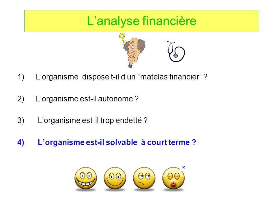 L'analyse financière L'organisme dispose t-il d'un matelas financier L'organisme est-il autonome