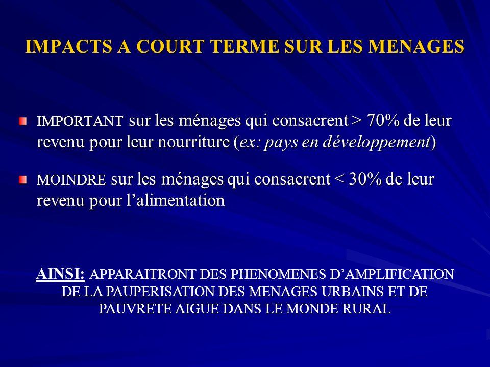 IMPACTS A COURT TERME SUR LES MENAGES