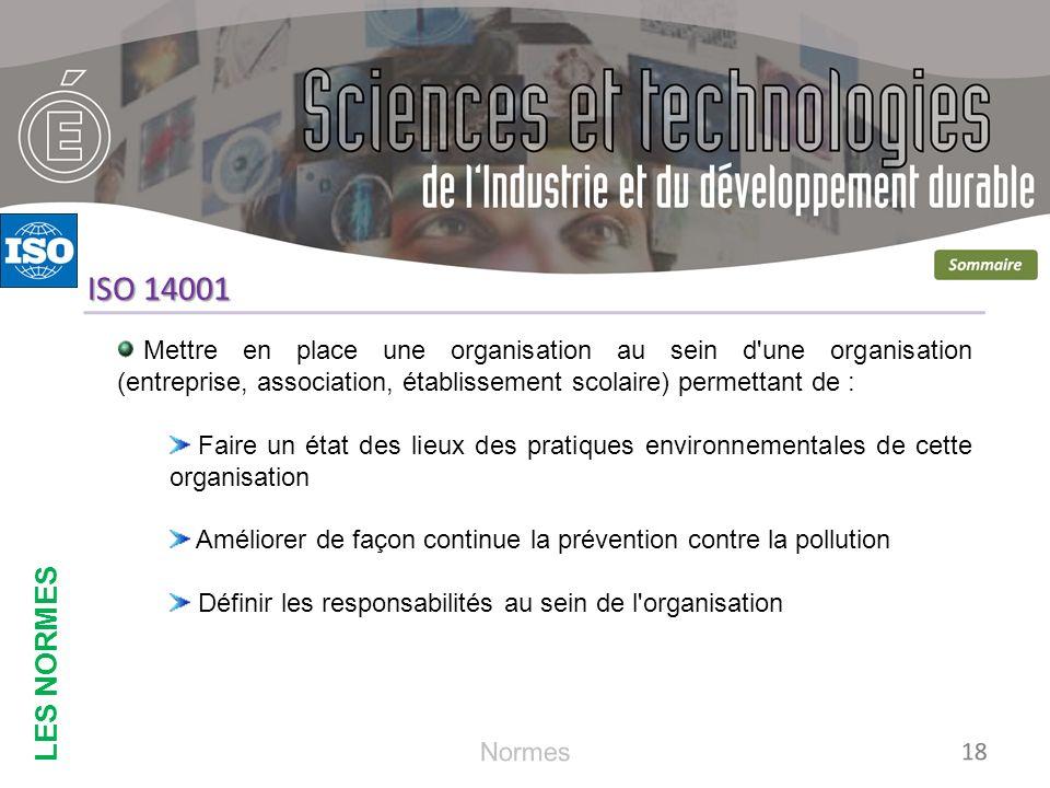 LES NORMES ISO 14001. Mettre en place une organisation au sein d une organisation (entreprise, association, établissement scolaire) permettant de :