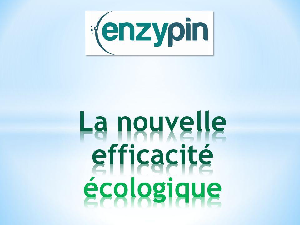 La nouvelle efficacité écologique