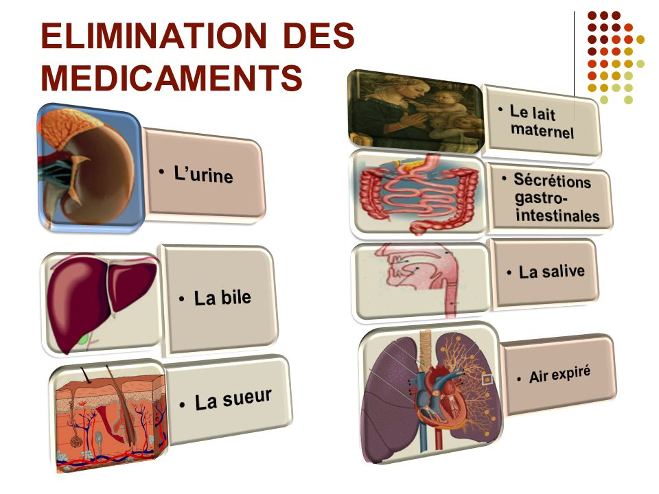 ELIMINATION DES MEDICAMENTS