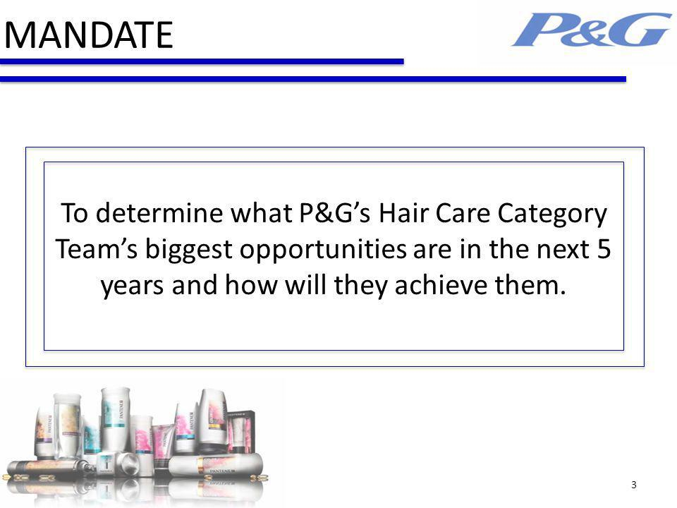 MANDATE To determine what P&G's Hair Care Category Team's biggest opportunities are in the next 5 years and how will they achieve them.