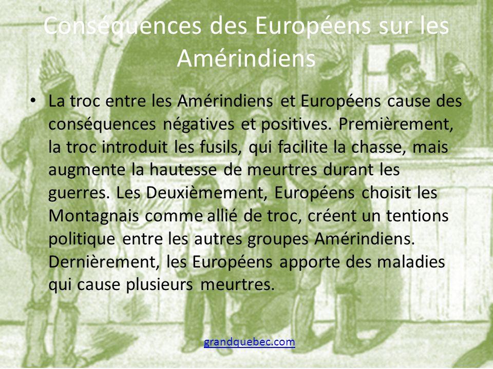 Conséquences des Européens sur les Amérindiens