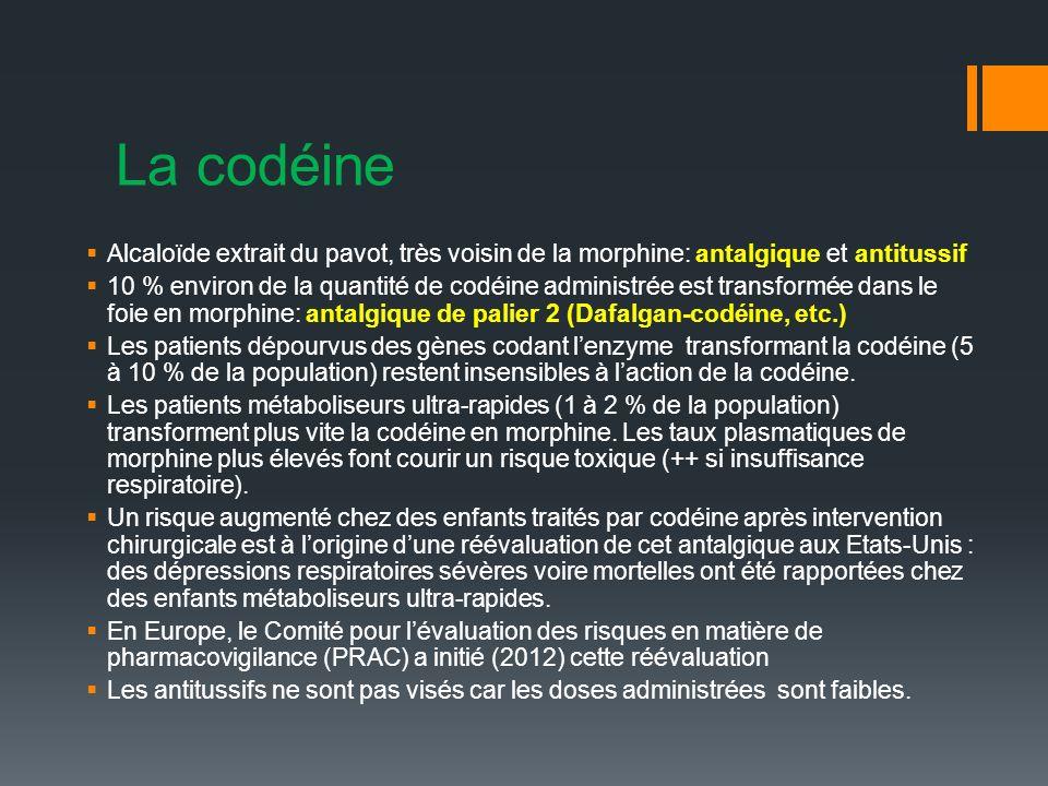La codéine Alcaloïde extrait du pavot, très voisin de la morphine: antalgique et antitussif.