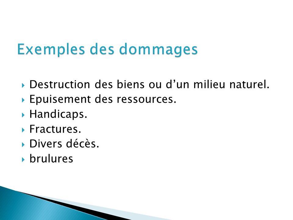 Exemples des dommages Destruction des biens ou d'un milieu naturel.