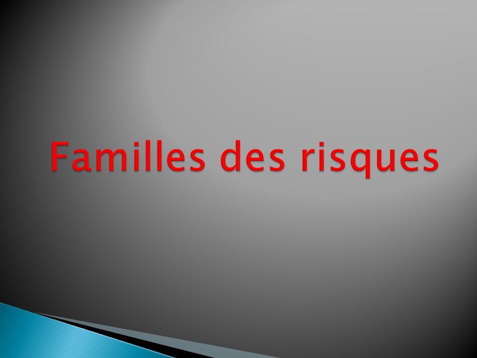 Familles des risques